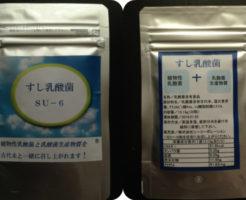 すし乳酸菌(SU-6)