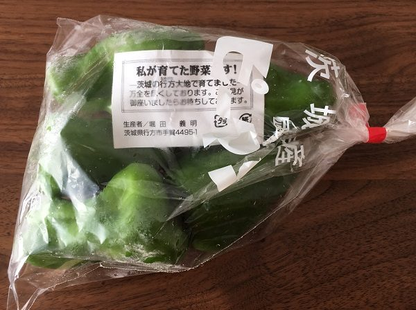 大地を守る会の宅配野菜のお試しセットのピーマン