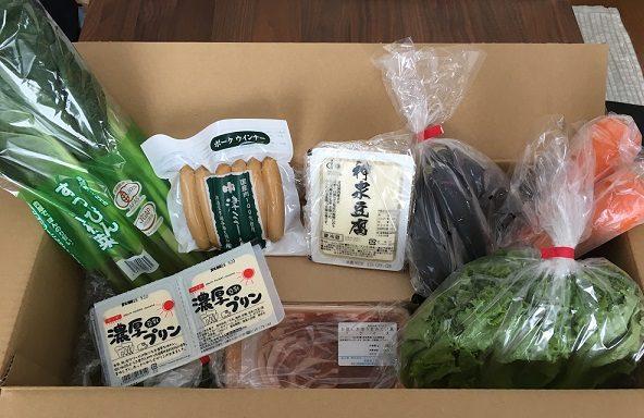 大地を守る会の宅配野菜のお試しセット